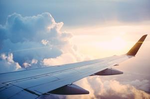 Quizz: départ en vacances avec nos compagnons