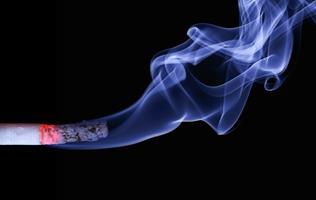 Le tabac, un danger pour nos compagnons