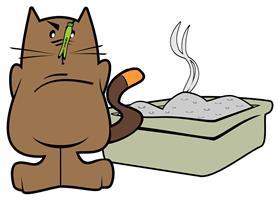 La malpropreté chez le chat
